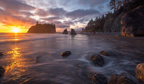 A beautiful sunset shines golden light on the iconic seastacks at Ruby Beach, a part of the Olympic National Park on the Pacific coast of Washington.