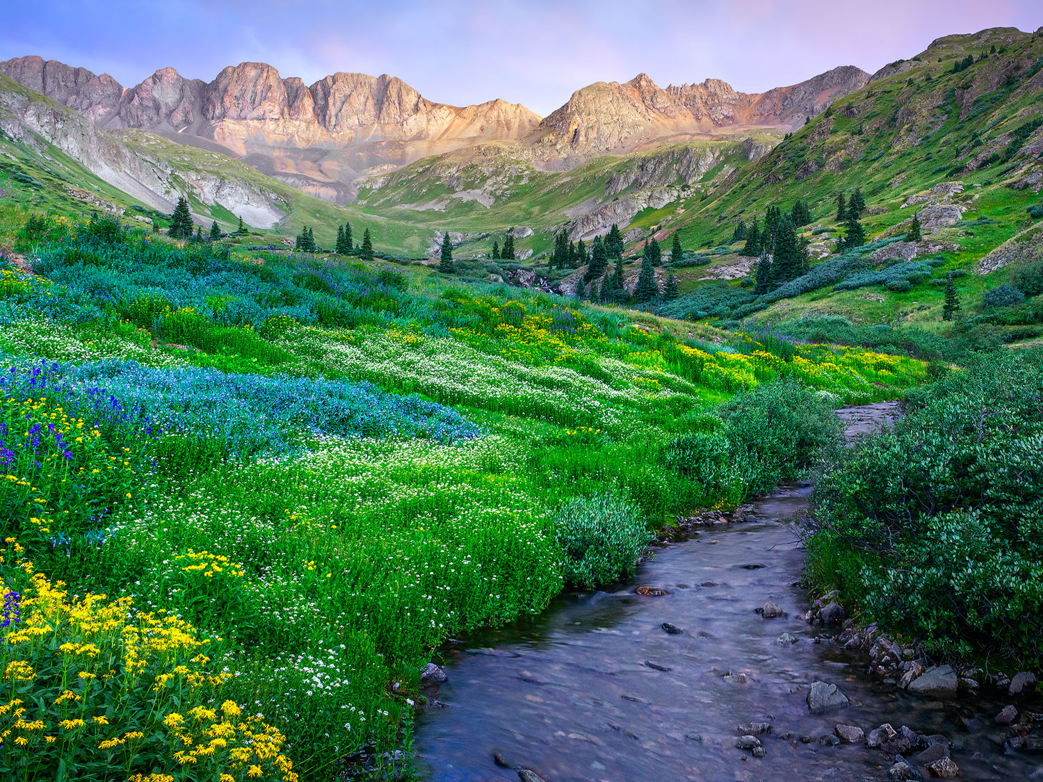 A variety of wildflowers are on slopes surrounding a creek leading up to high mountain peaks of the Alpine Loop in Colorado. Taken during a cloudy sunset.